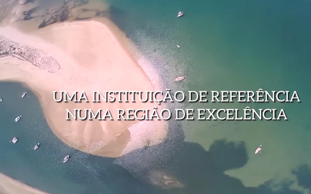 Institucional – IEFP Algarve